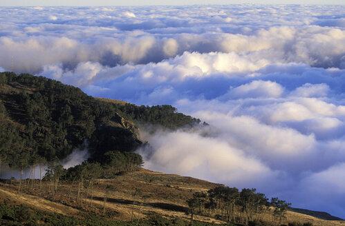 view from Pico de Areiro, Madeira, Portugal - 00730HS