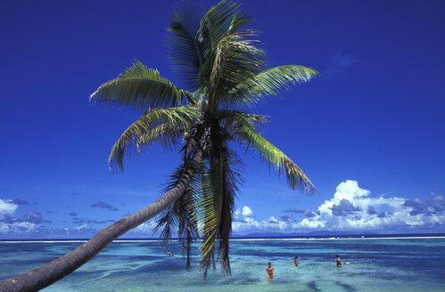 Seychelles, La Digue, Anse Source d`Argent - 00286HS