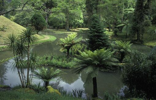 Terra Nostra Park, Furnas, Azores - 00093HS