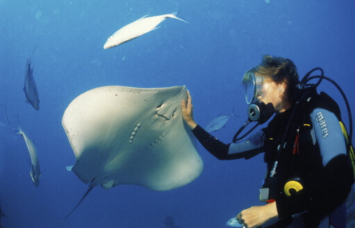 French Polynesia, diving with friendly ray - 00171GN