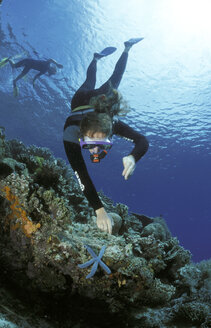 Diver pointing on starfish - GN00544