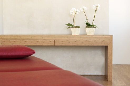 Two potted orchids in front of wall on shelf by red couch - 00146BM-U
