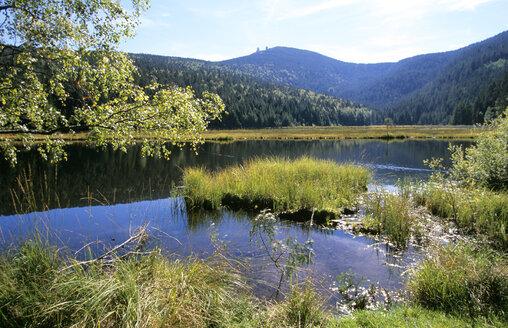 Kleiner Arbersee, Bavarian Forest, Germany - HSF00921