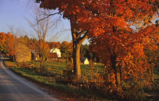 USA, Vermont, Farm near Weston - HS00897