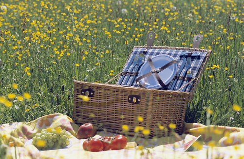 Picnic basket and fruit in meadow - LDF00112