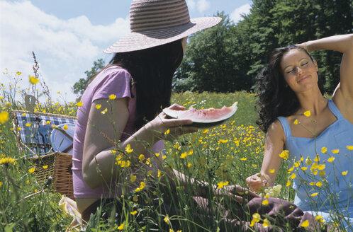Two women having picnic in field - LDF00081