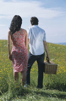 Couple with picnic basket in meadow holding hands, rear view - LDF00063