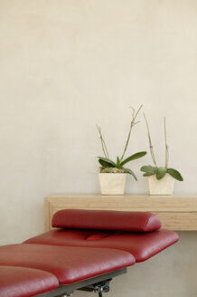 Two potted plants in front of wall on shelf by red chair - BMF00212