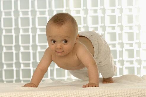 Baby boy (6-11 months) crawling - CRF00777