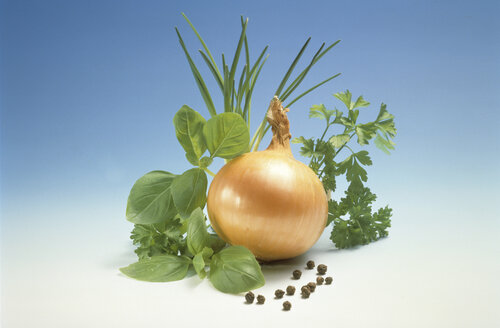 Onion and herbs - MB00200