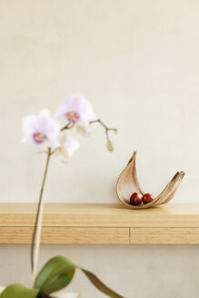Fruit bowl with apple on shelf and orchid - BMF00253