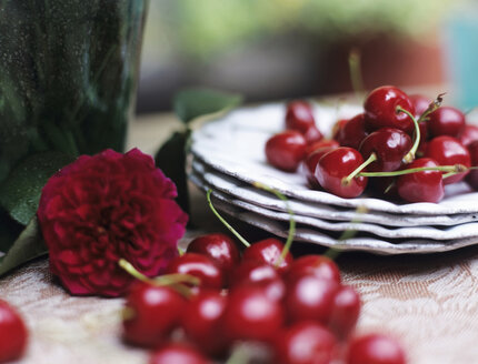 Cherries, peony and plates on table, close-up - HOEF00153