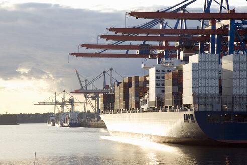 Germany, Hamburg, container ship in Waltershofer Hafen at Burchardkai - 00018MS-U
