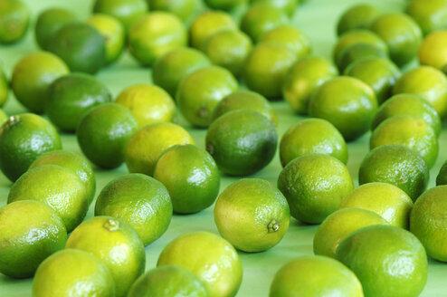 Limes, close-up - ASF02404