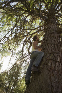 Young man climbing tree house - BABF00111