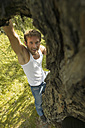Young man climbing on tree, elevated view - BABF00027