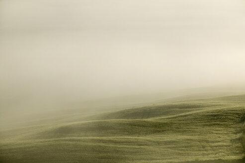Italy, Tuscany, landscape in mist - MRF00775