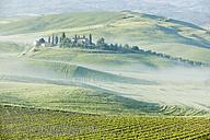 Italy, Tuscany, landscape - MRF00757
