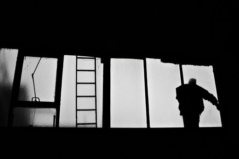 Man standing on window, rear view - DW00014