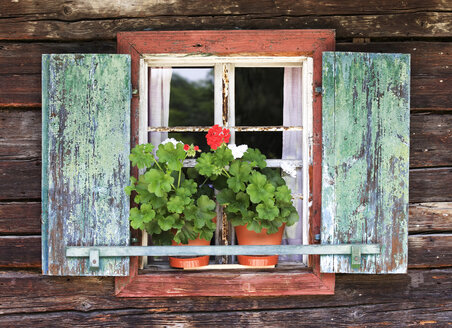 Austria, Farmhouse with potted plants on a windowsill - WWF00247