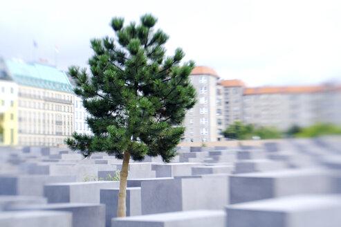 Germany, Berlin, memorial - KM01012