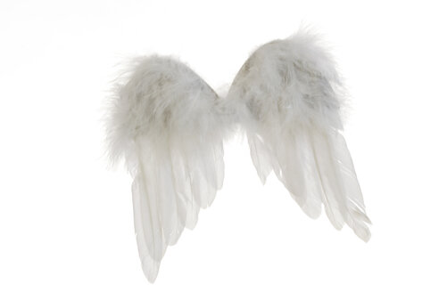 Angel wings - 06652CS-U