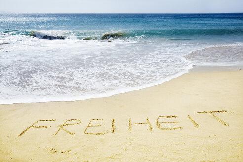 Ocean and beach - LDF00499