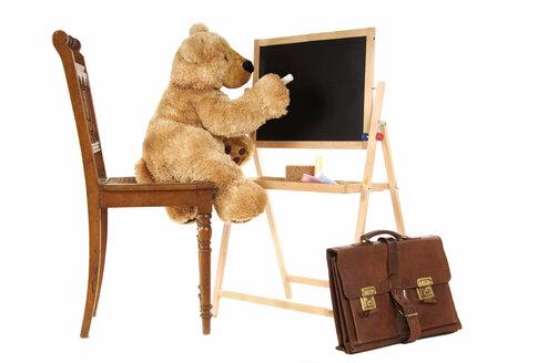 Teddy bear writing on black board - 00295LR-U