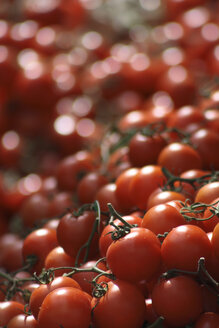 Tomatoes on market stall, close-up - TLF00158