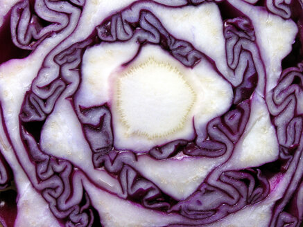 Sliced red cabbage, close-up - TLF00149