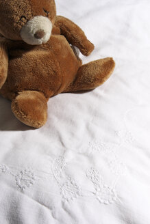 Teddy bear on duvet - TLF00146