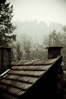 Germany, Hut in the forest and thick fog - DW00136