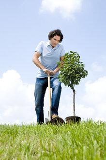 Man planting tree, close-up - LDF00504