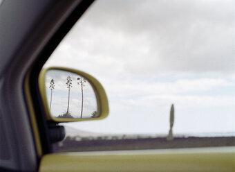 Spain, Lanzarote, Timanfaya National Park, trees  in car mirror - PK00230