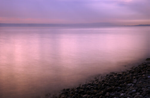 Germany, misty landscape on Lake Constance - SMF00227