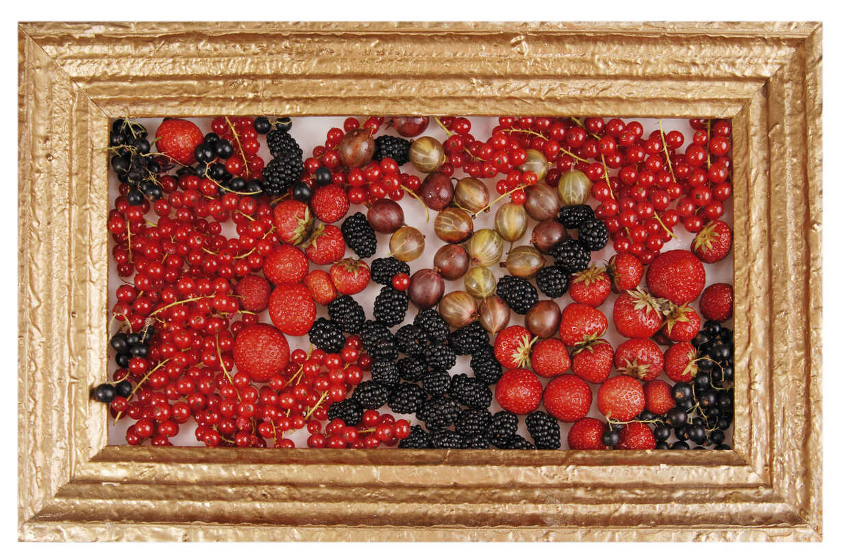 Variety of berries in picture frame - 00348LR-U - Liane Riss/Westend61