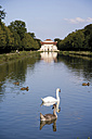 Germany, Bavaria, Swimming swans and ducks in front of Palace Lustheim - 00204DH-U
