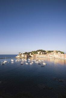 Italy, Liguria, Sestri Levante - MRF00964