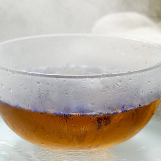 Cornflowers in bowl with hot water - CHK00611