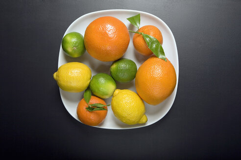 Citrus fruits on plate, elevated view - MNF00127