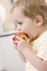 Baby girl (2-3) eating an apple - SMOF00146