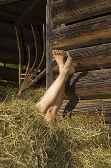 Woman's feet in the hay, low section - HHF01710
