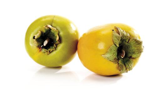 Japanese persimmon, kakis - 08302CS-U