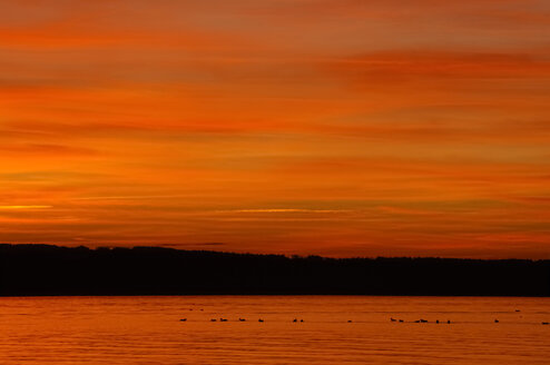 Germany, Lake Constace with afterglow - SMF00312