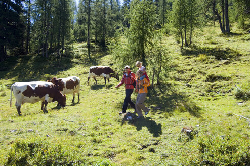 Austria, Salzburger Land, couple with daughter (6-7) hiking - HHF01914