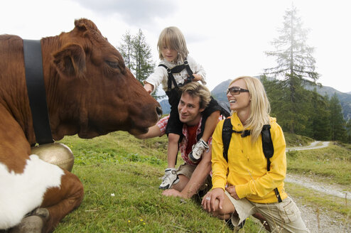 Austria, Salzburger Land, Family looking at cattle - HHF01811