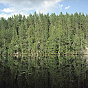 Finland, river and woodland - PM00517