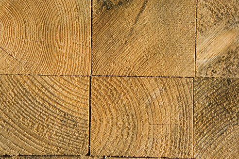 Soft wood, close-up - HKF00217