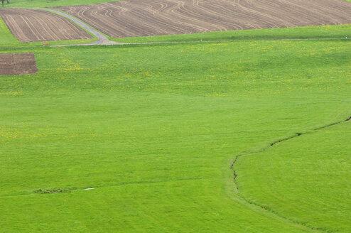 Germany, Ravensburg, Landscape, Farmland - SMF00336