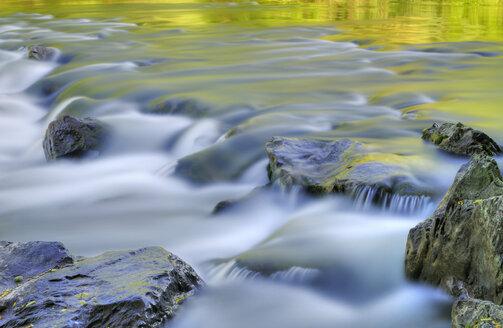 Germany, Langenargen, Argen River - SMF00321